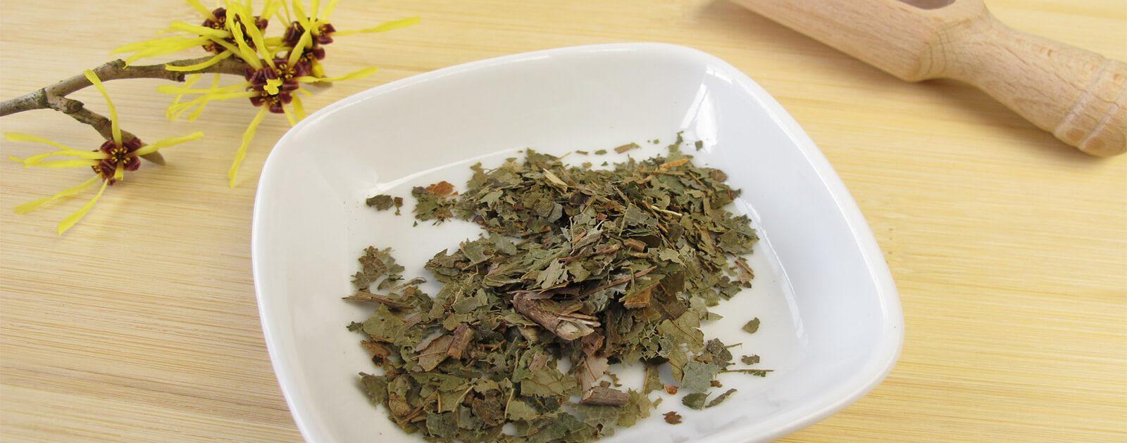 Hamamelis: Der pflanzliche Wirkstoff ist auch in FAKTU® lind enthalten.